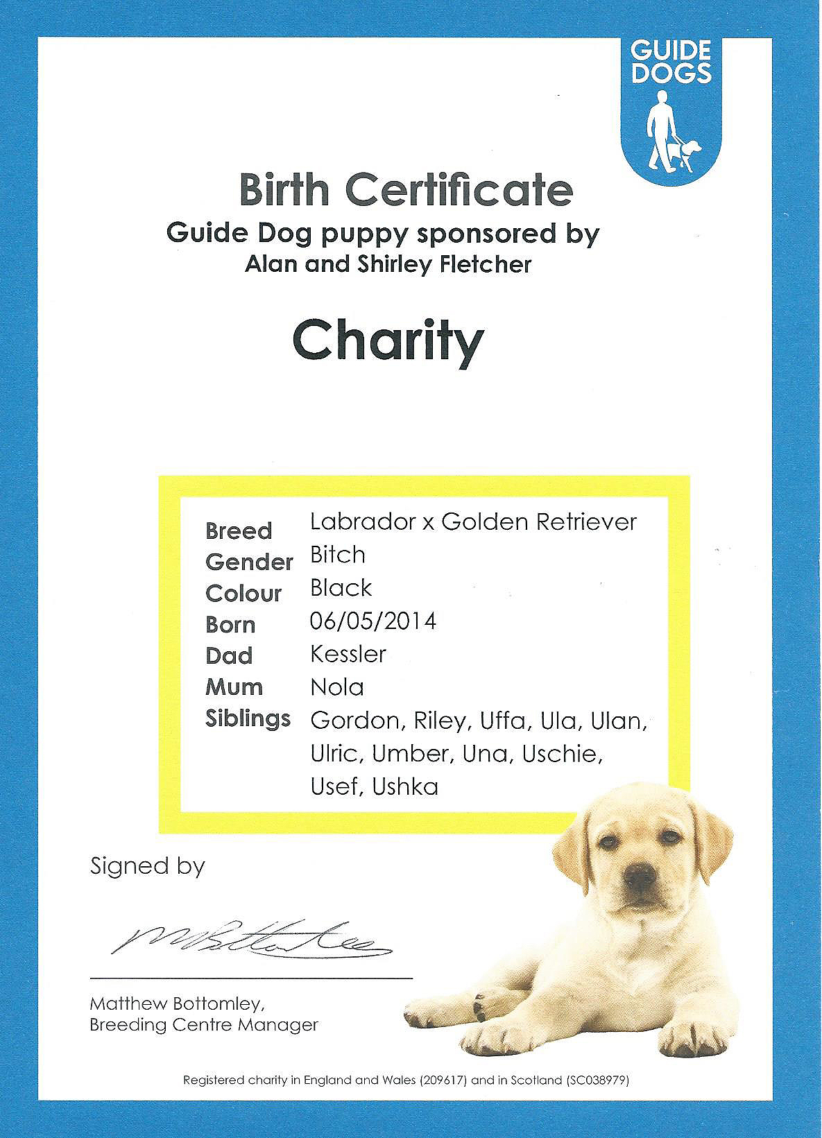 dog birth certificate