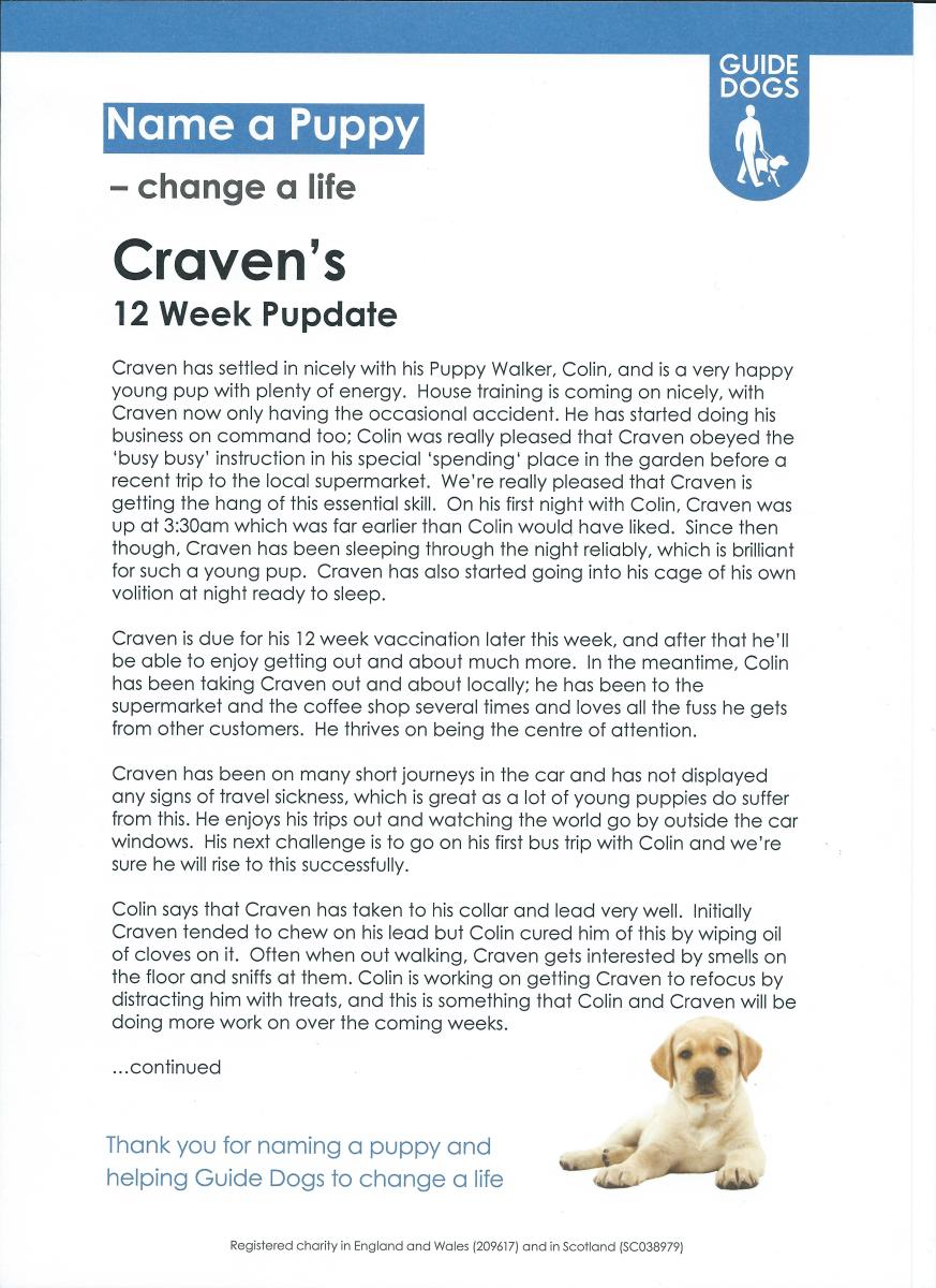 Craven 12 Weeks Old Pupdate Page 1