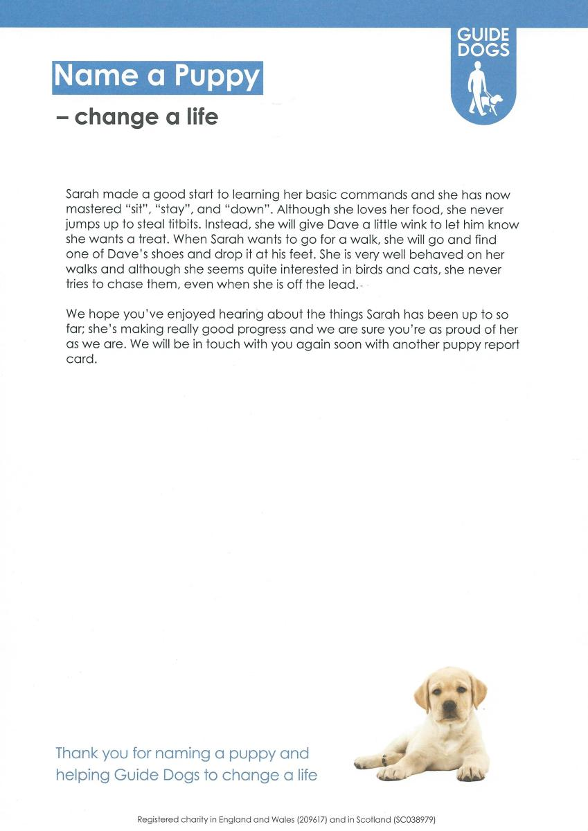 Sarah - 6 Month Pupdate [Page 2]